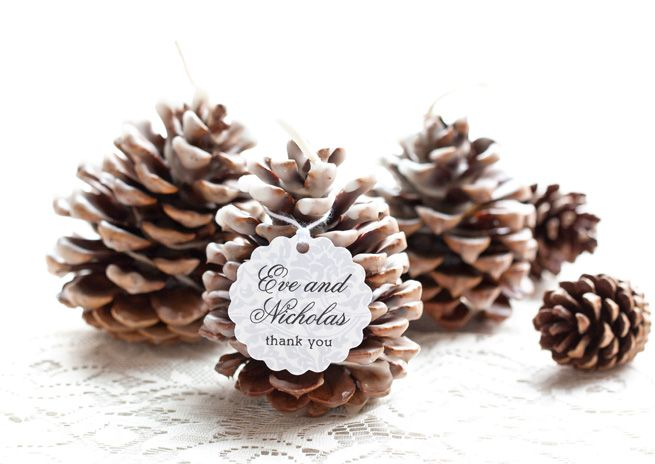 Pinecone Fire Starter winter wedding favours ideas,winter wedding favours ideas