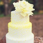 Yellow wedding ideas - See more : https://www.itakeyou.co.uk/wedding/yellow-wedding-ideas/