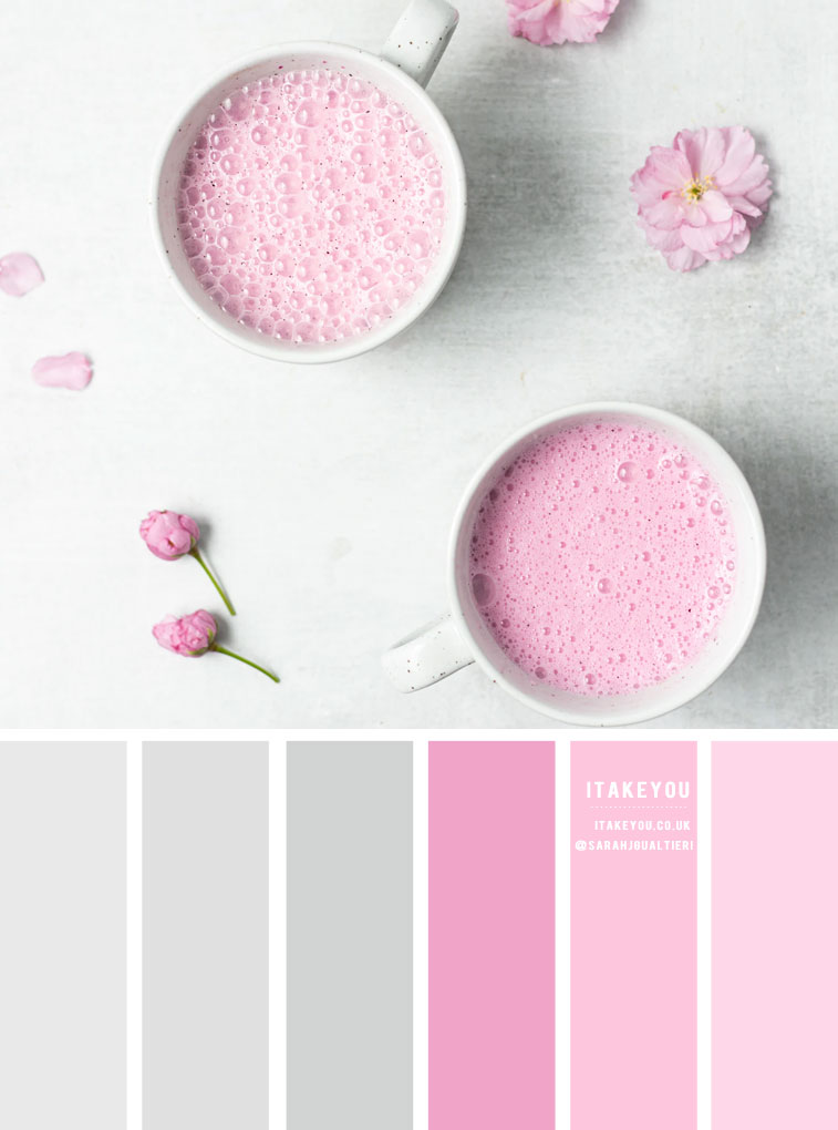 Grey and Pink Color Scheme