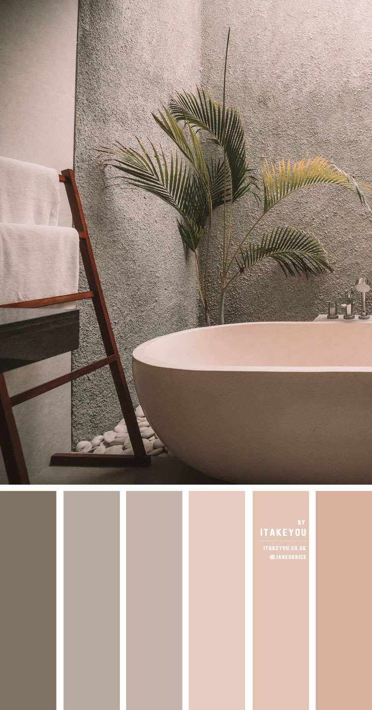 Earth Tone Color Scheme For Minimalist bathroom