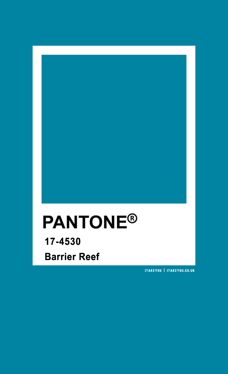 Pantone Color : Pantone Barrier Reef