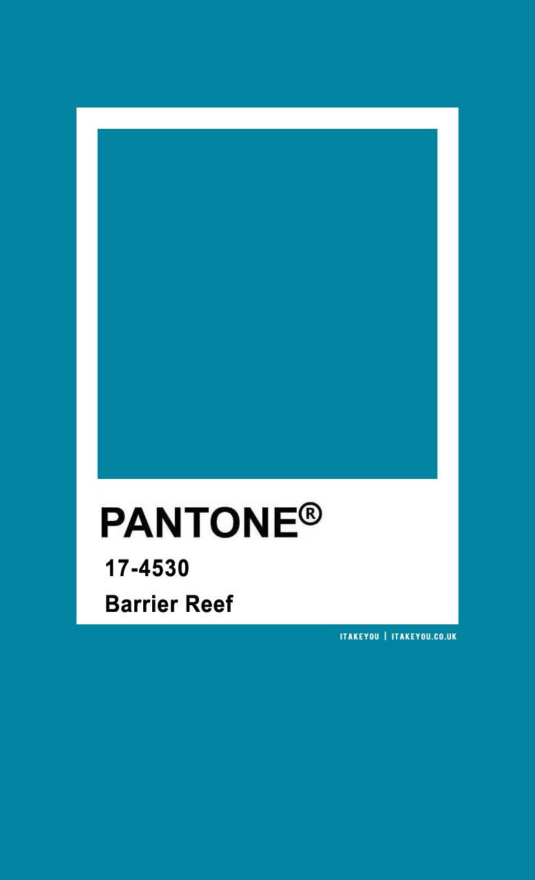 pantone color, pantone , pantone barrier reef , pantone color 17-4530, , pantone color names , barrier reef, pantone teal, pantone colors, pantone color 2020