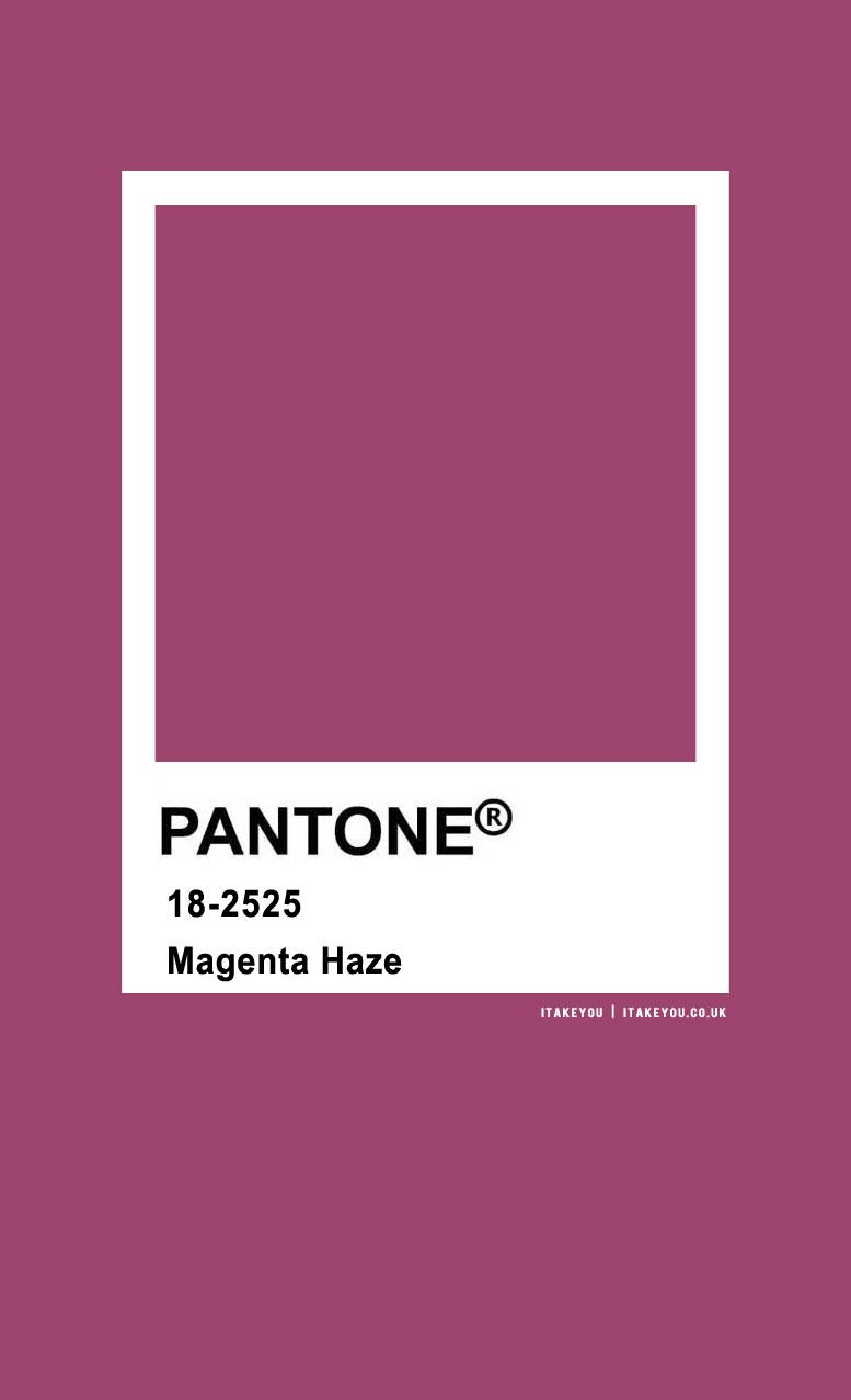 Pantone Color : Pantone Magenta Haze color