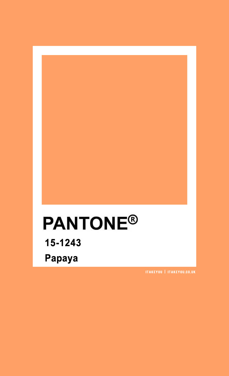 Pantone Color : Pantone Papaya Color