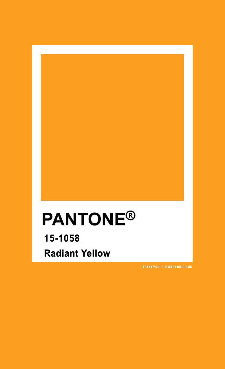 pantone color , pantone color names, pantone colors, pantone colors 2020, radiant yellow, pantone radiant yellow