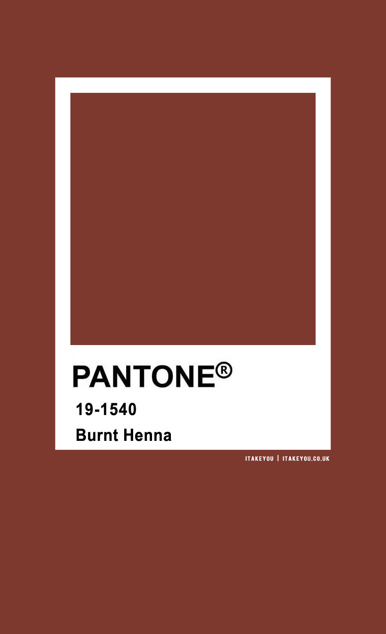 Pantone Color : Pantone Burnt Henna Color