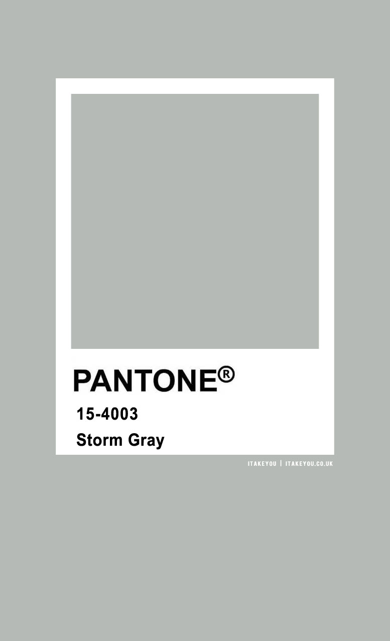 Pantone Color : Pantone Storm Gray Color