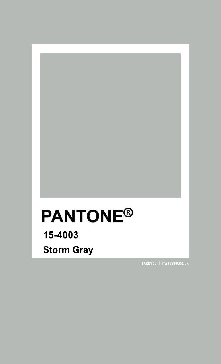 Pantone Color : Pantone Storm Gray Color