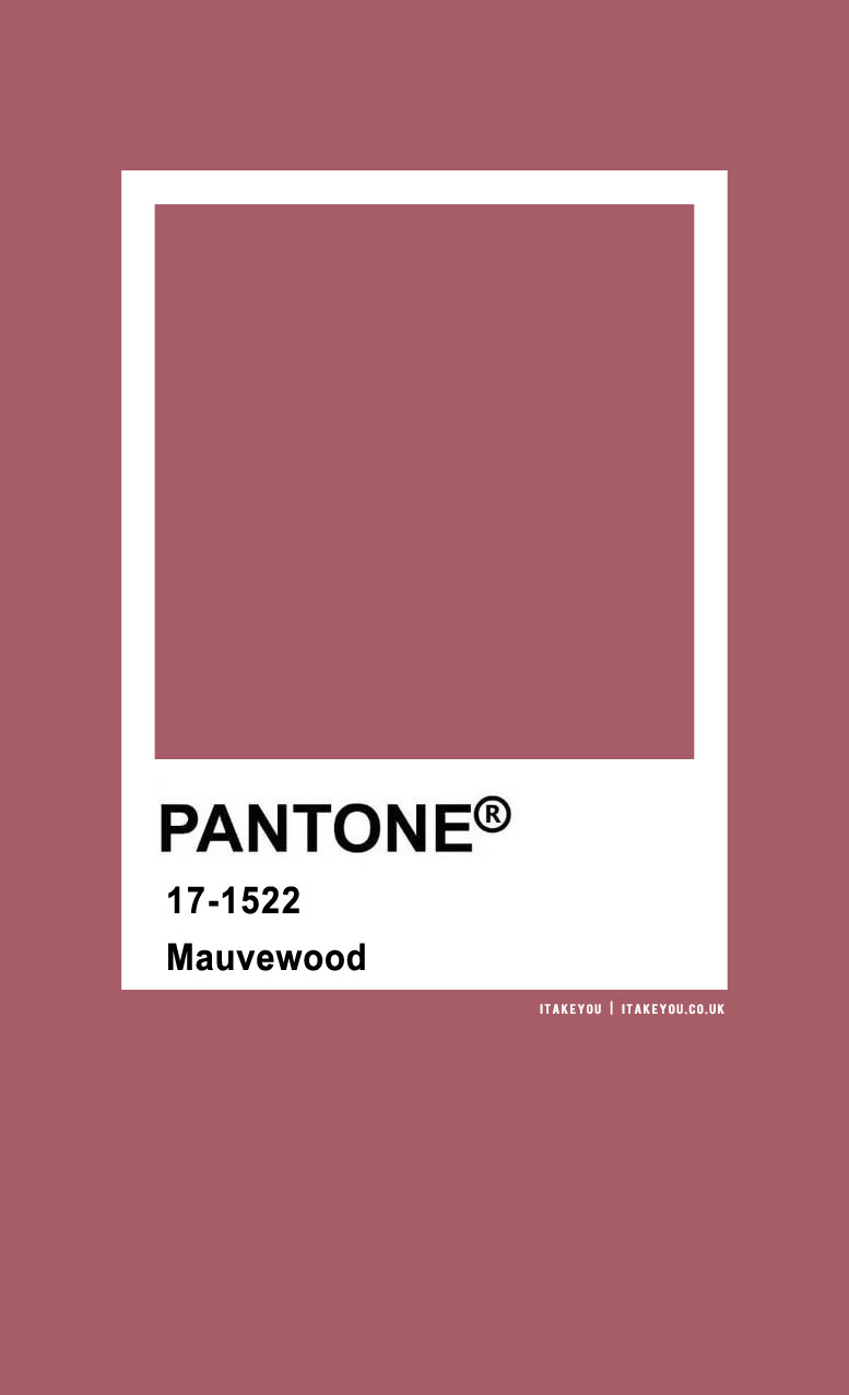 Pantone Color : Pantone Mauvewood Color