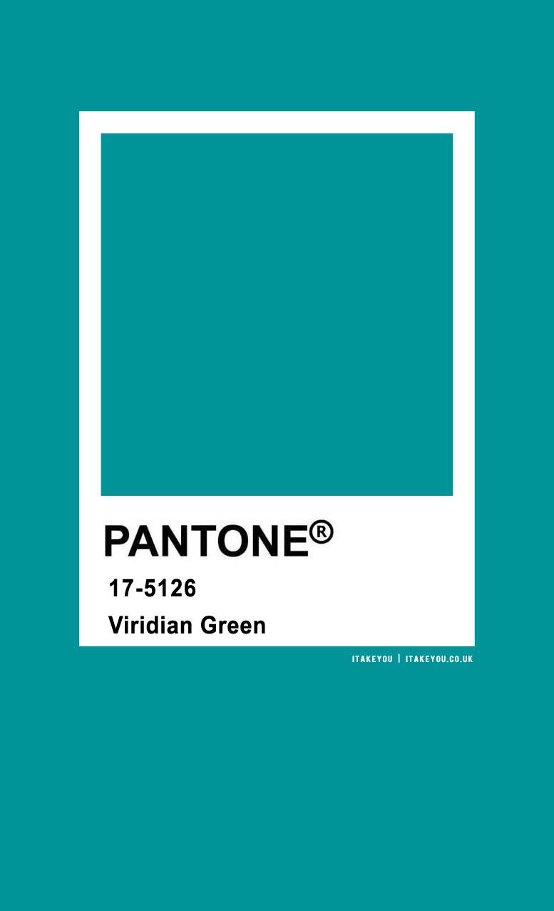 Pantone Color : Pantone Viridian Green Color