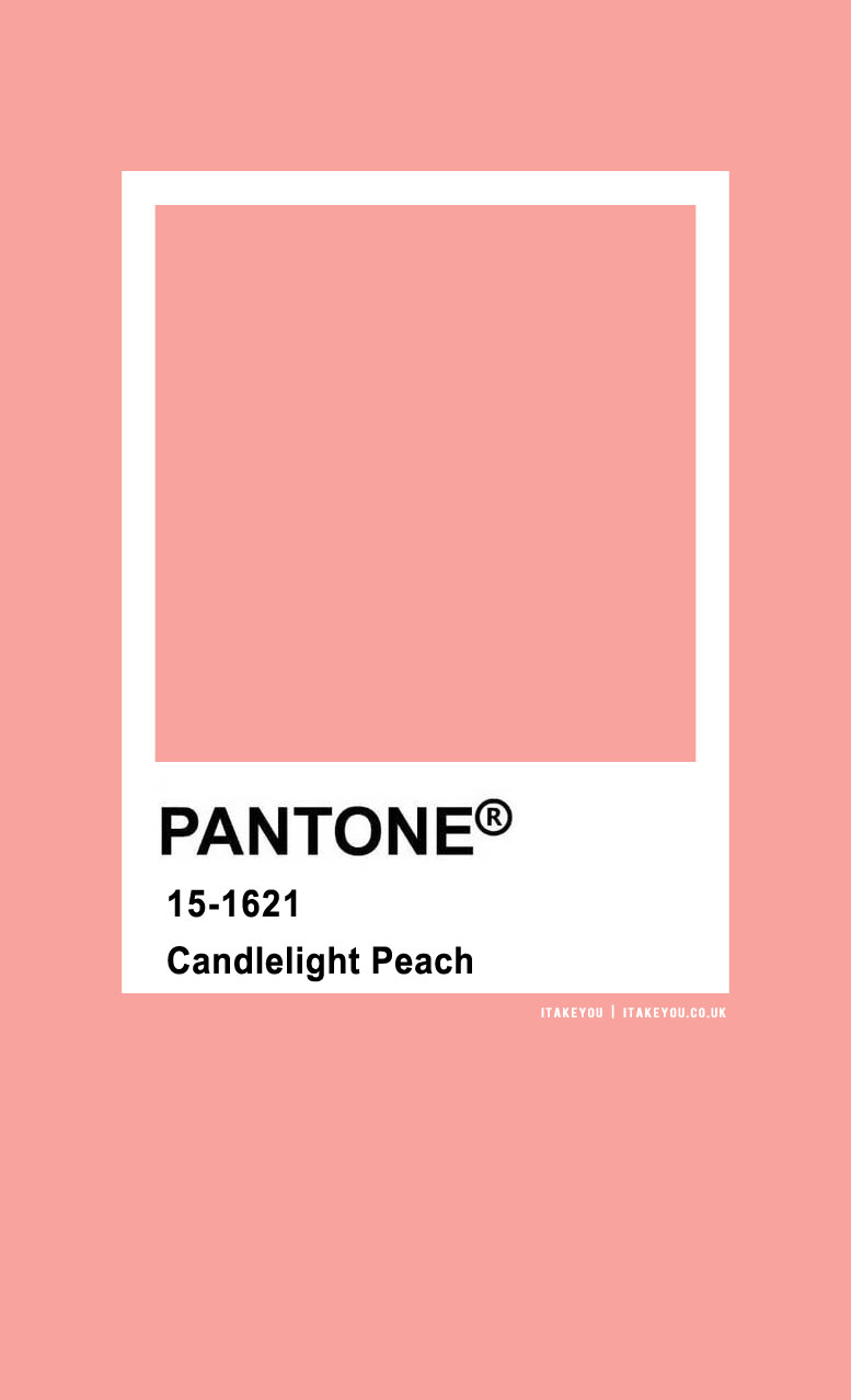Pantone Color : Pantone Candlelight Peach