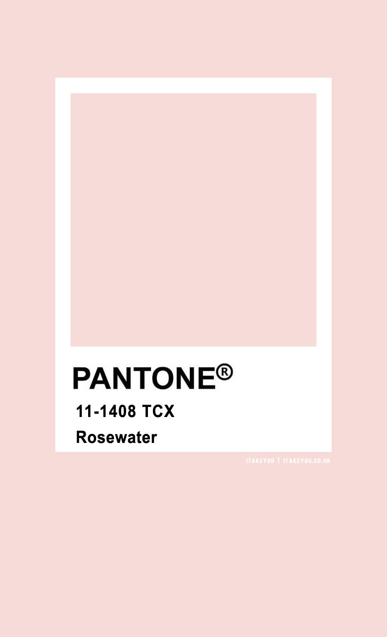 Pantone Color : Rosewater Pantone Color