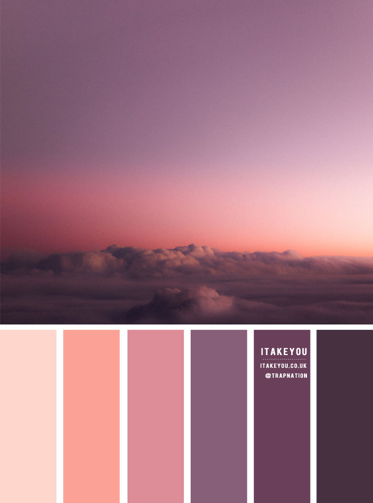 Lavender , Purple and Salmon Color Combos