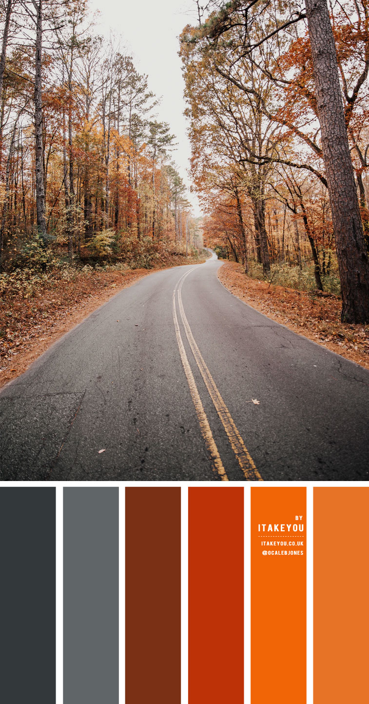 Brown Dark Grey and Orange Rust Color Scheme – Color Palette #27
