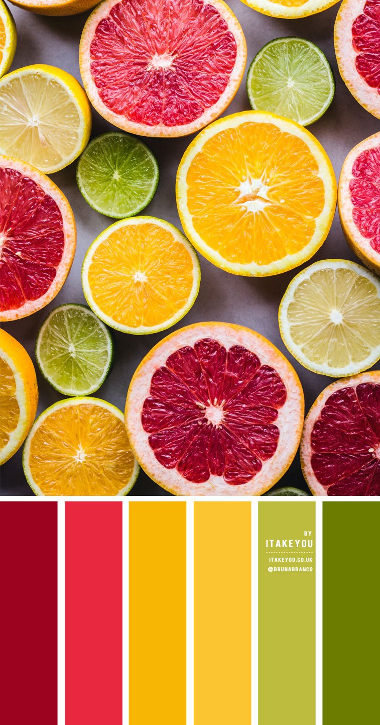 Citrus Color Scheme – Color Palette #28