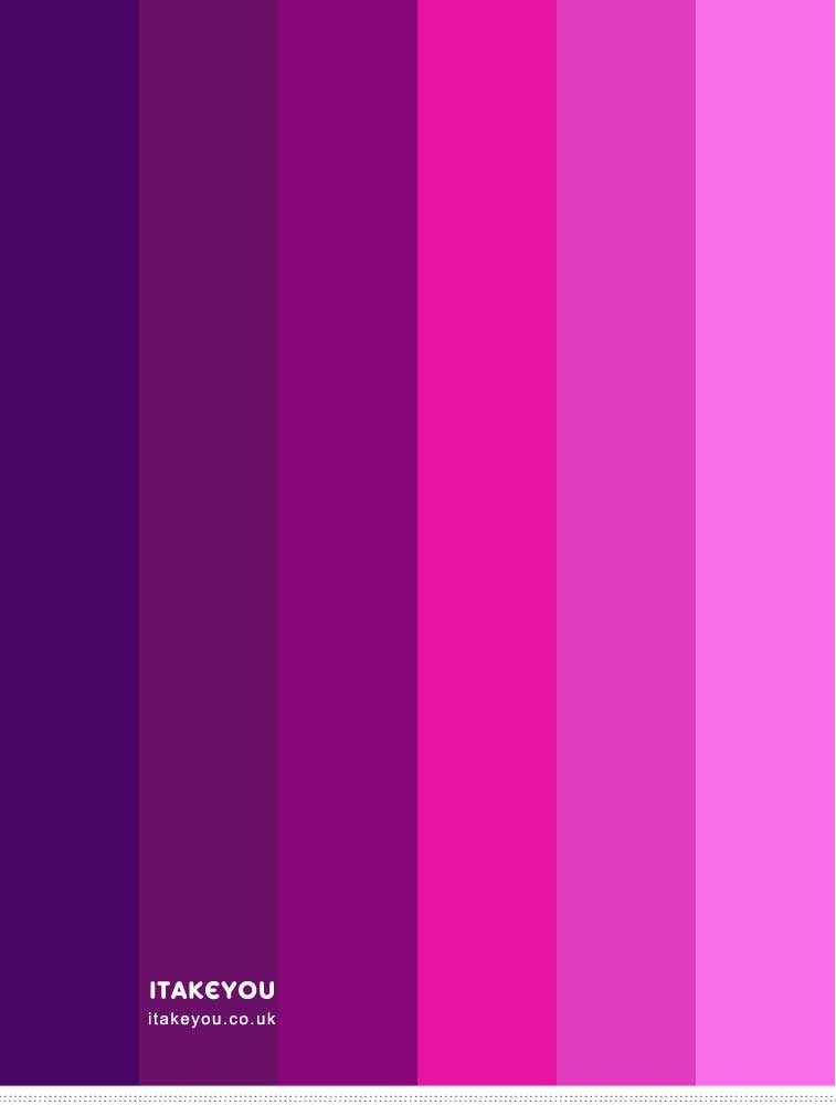 Indigo magenta pink and purple color scheme