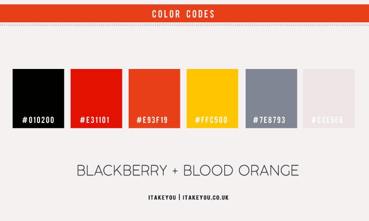 blood orange color, blood orange color scheme, blackberry and blood orange, black and blood orange color scheme, black orange and yellow color scheme, color palette, color combo