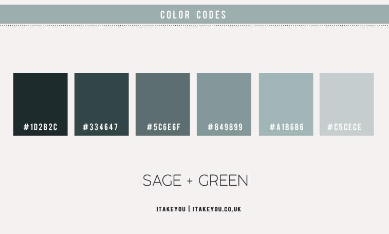 sage color scheme, sage green color scheme, sage and green pumpkin color, sage color combo, sage color
