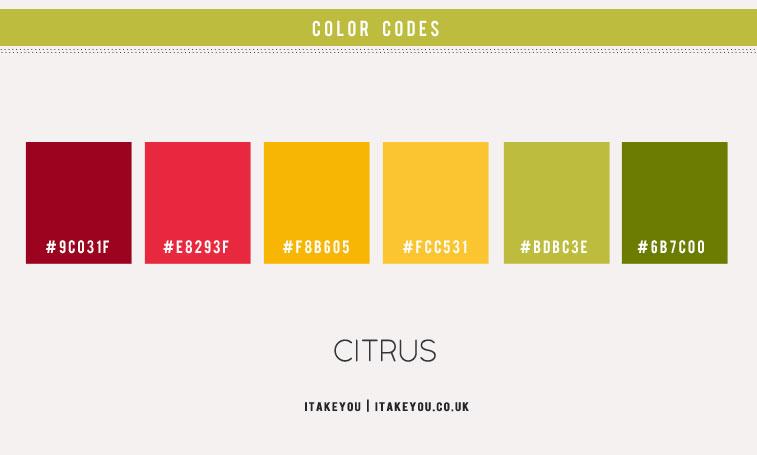 chartreuse color combo, citrus color scheme, citrus color combo, pink yellow and lime color scheme, citrus color combination