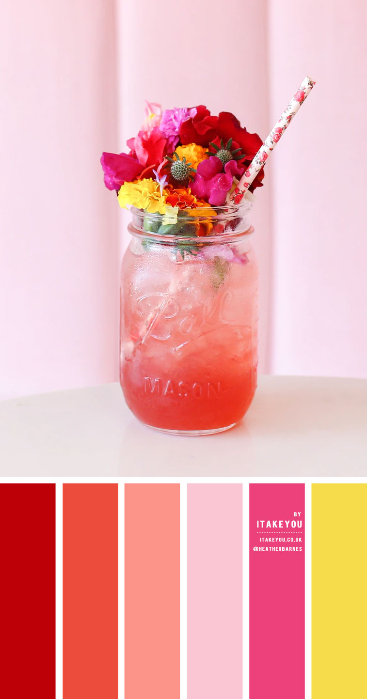 Coral and Pink Colour Scheme – Colour Palette #38