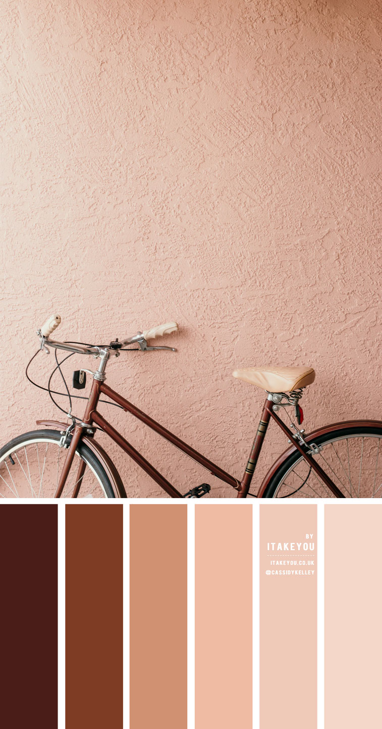 Earth tone color scheme – Colour Palette #39