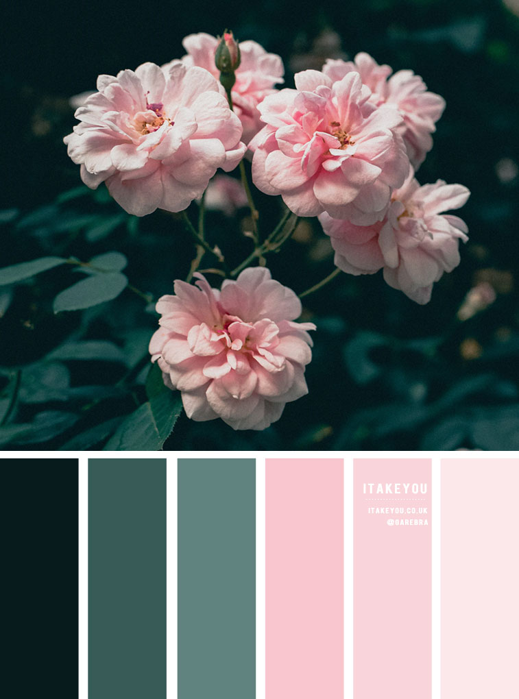 Green and pink color scheme