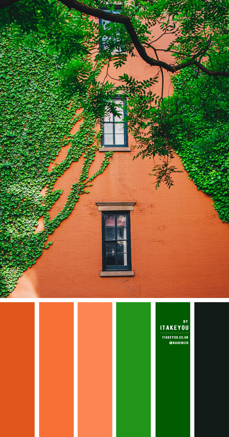 Green and Terracotta color scheme