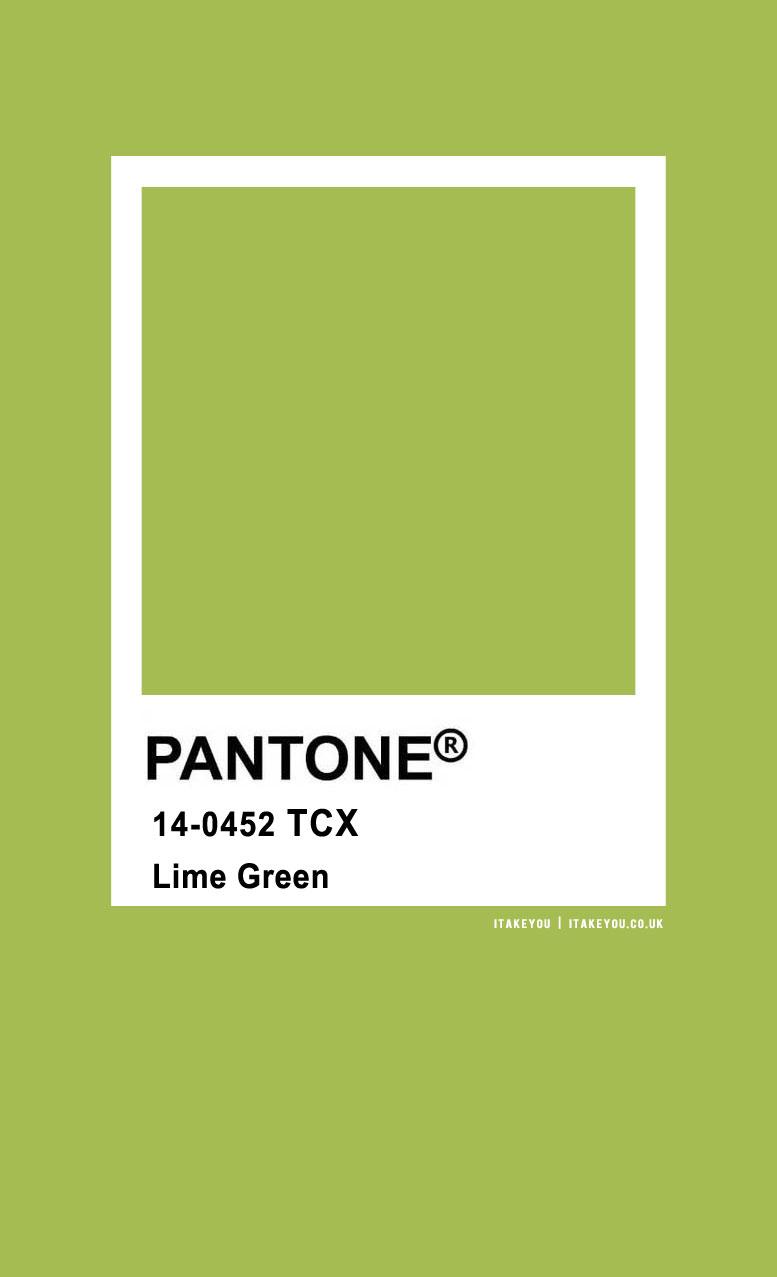 Pantone Color : Pantone Lime Green Color
