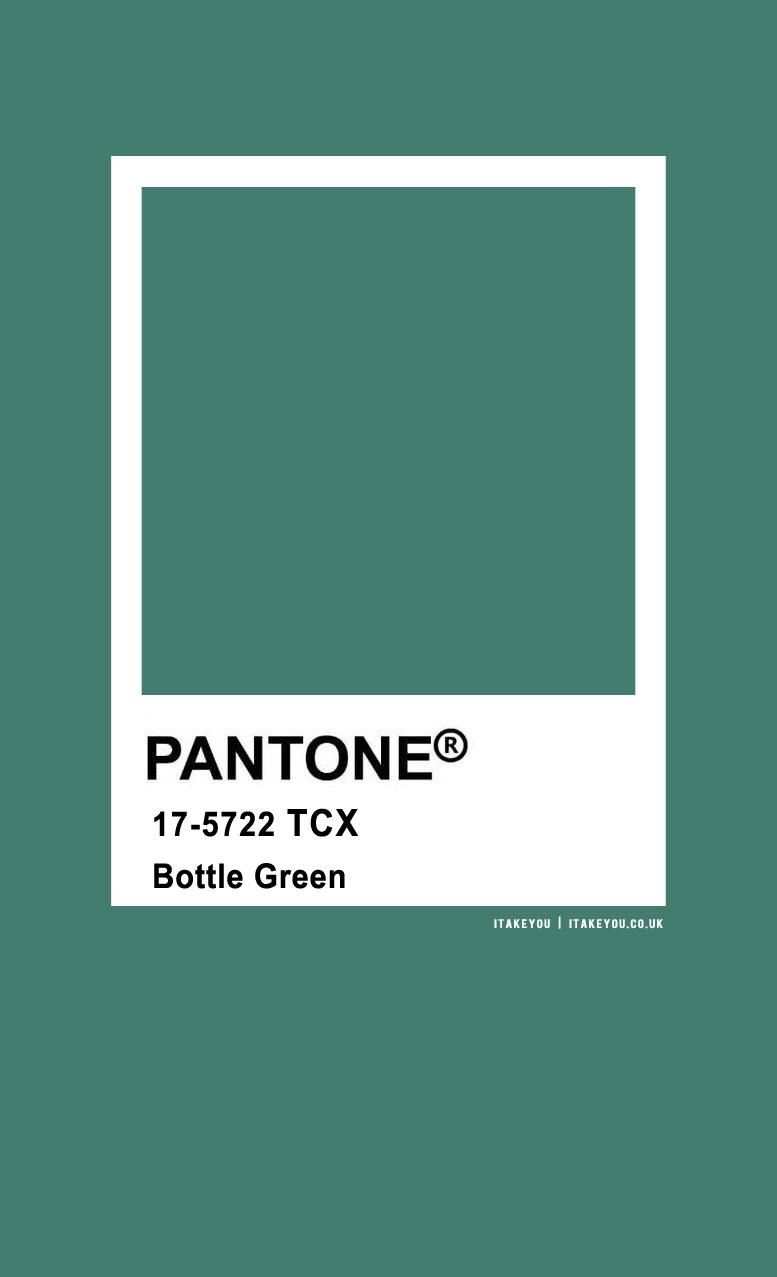 pantone green, bottle green, bottle green color, pantone green, bottle green pantone, pantone color