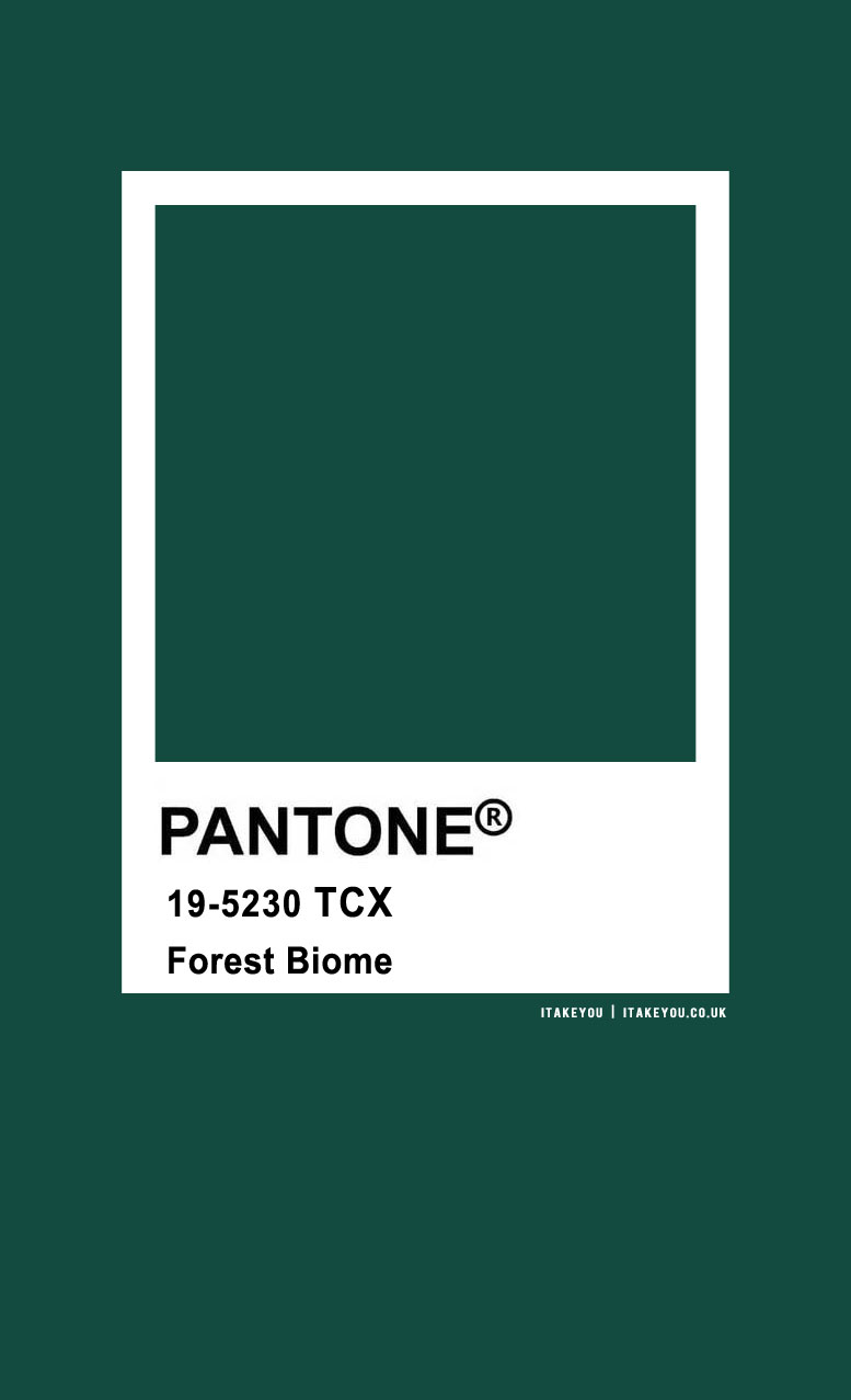 Pantone Color : Pantone Forest Biome Color