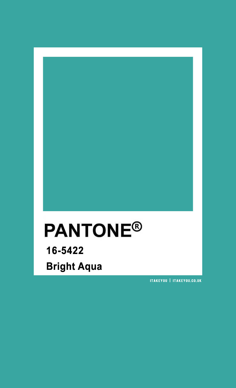 Pantone Color : Pantone Bright Aqua