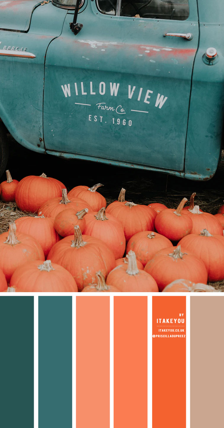 Pumpkin and Teal Color Scheme – Color Palette #24