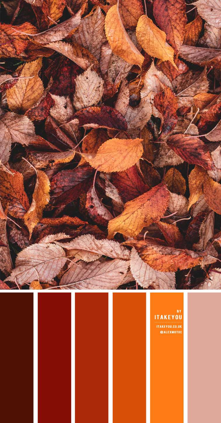 Rust Color Scheme – Color Palette #35