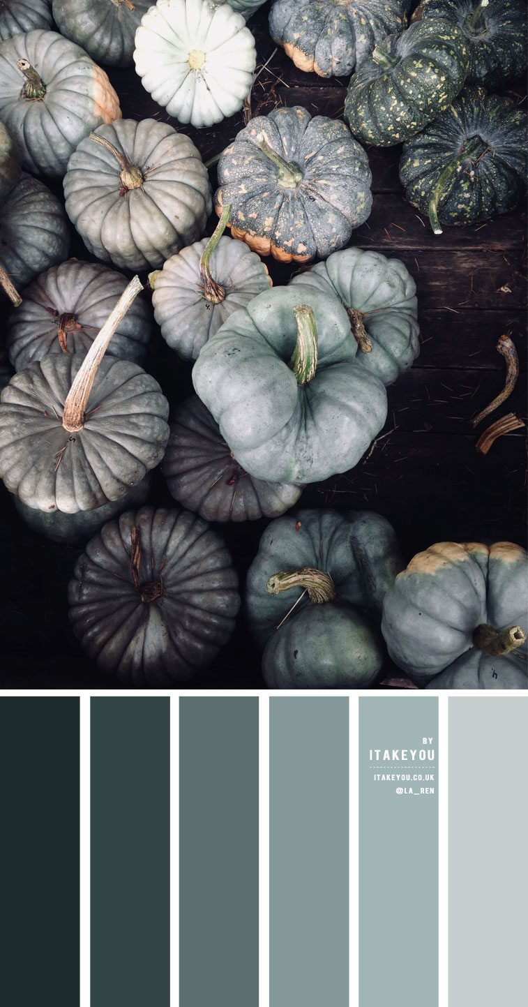Sage and green pumpkin color scheme – Color Palette #25