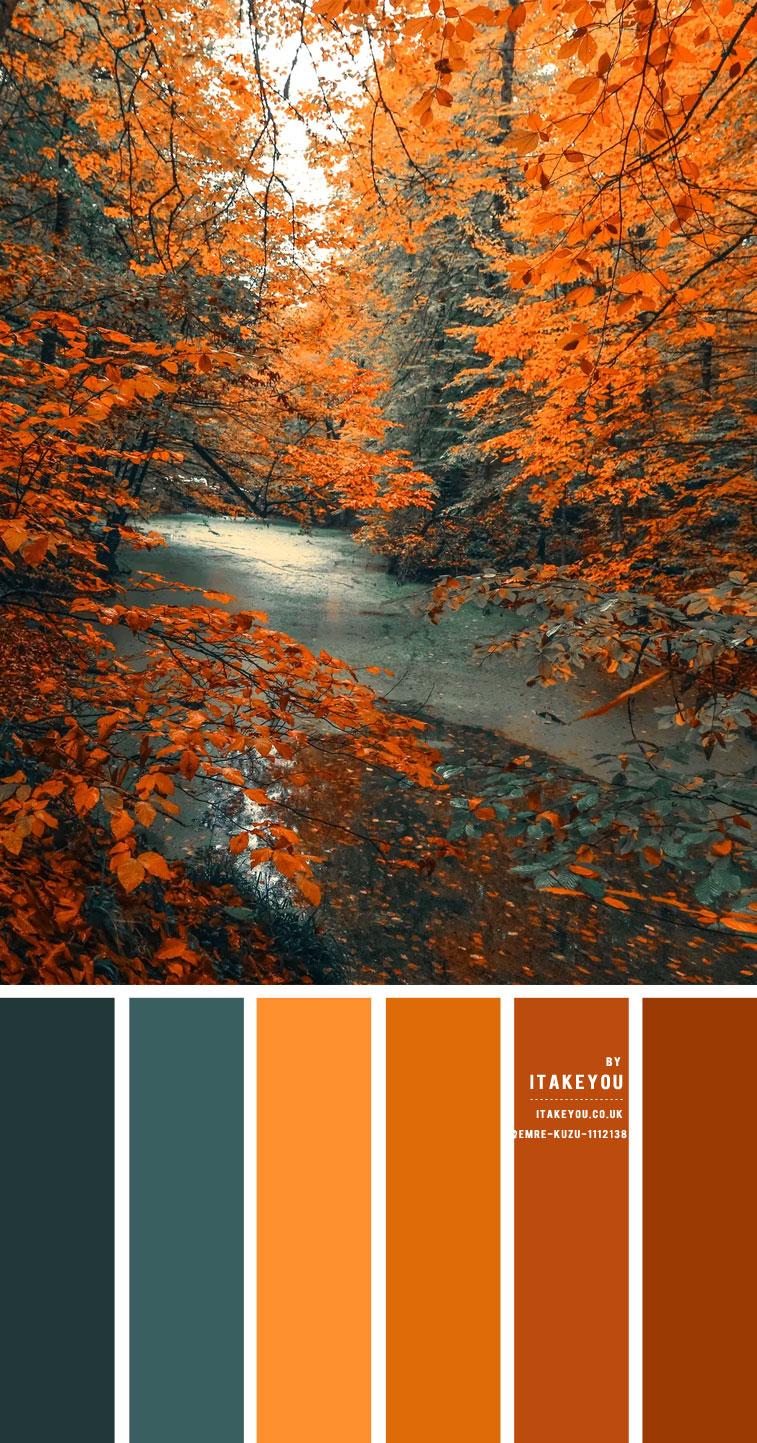 grün blaugrün und braun, Herbstfarbkombination, Herbstfarbpalette, Herbstfarbkombination, Herbstfarbe, blaugrüne und braune Farbpalette, braune und blaugrüne Farbpalette #colorpalette #colorcombo #autumn