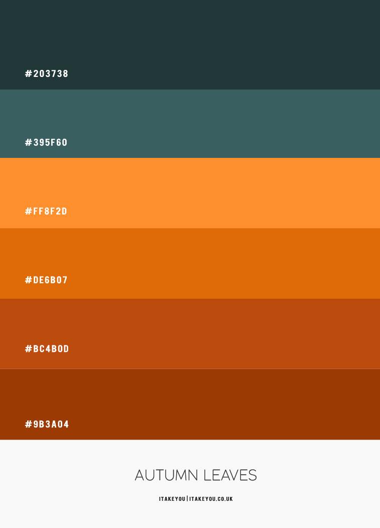 Hex-Farbe, Herbst-Hex-Farbe, braun und blaugrün Hex-Farbe, grün blaugrün und braun, Herbst-Farbkombination, Herbst-Farbpalette, Herbst-Farbkombination, Herbst-Farbe, blaugrün und braun Farbpalette, braun und blaugrün Farbpalette #colorpalette #colorcombo #autumn